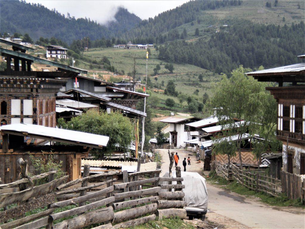 Bhutan-DMC-Black-Necked-Crane-Festival-Tour-5-scaled.jpg