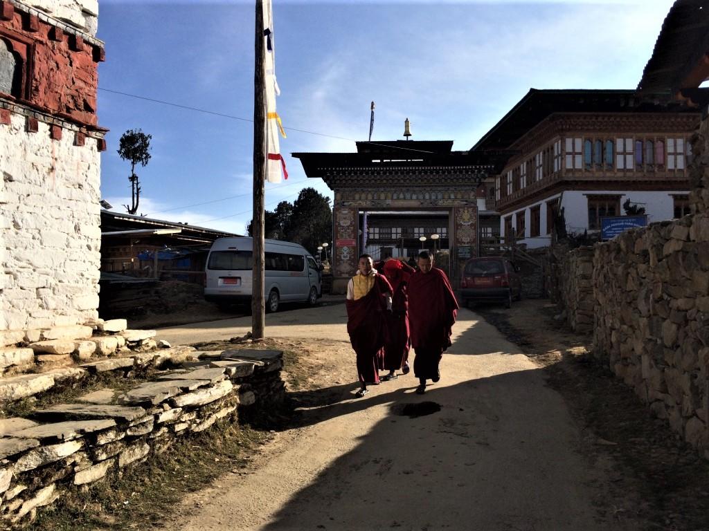 Bhutan DMC- Black Necked Crane Festival Tour 7